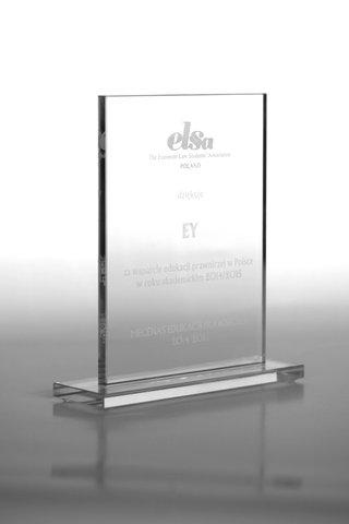 ELSA (1).jpg