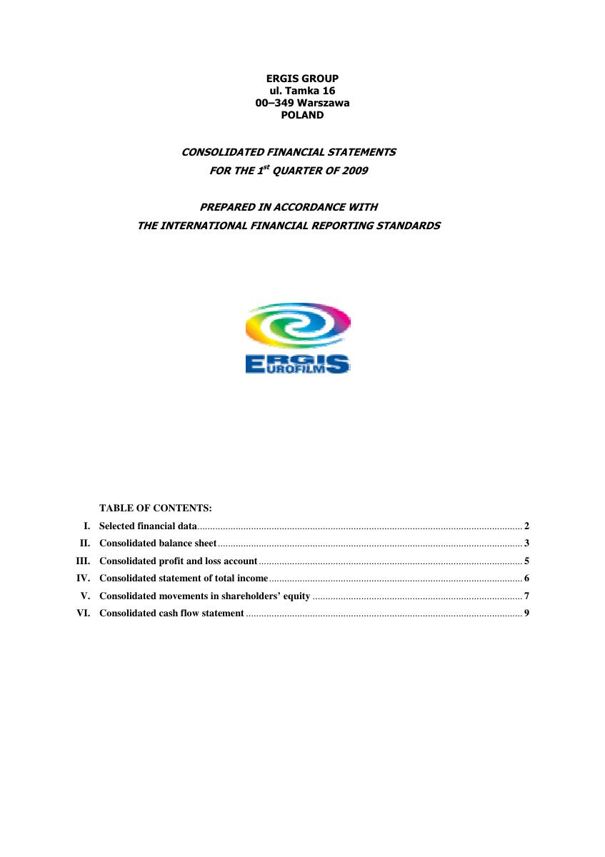 Consolidated financial statement of ERGIS Group for I Q 2009