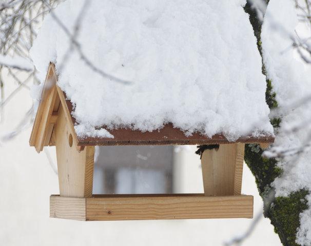 Nowe, zakupione wsklepie budki dlaptaków bądź zadaszone karmniki są zazwyczaj wykonane zsurowego drewna, które należy prawidłowo zabezpieczyć..jpg
